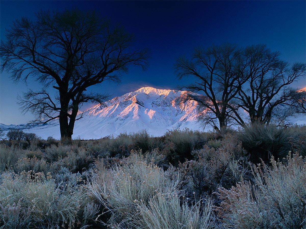 Mt. Tom- First Summit Light, Bishop, CA Carmichael Productions, Inc. Landscape