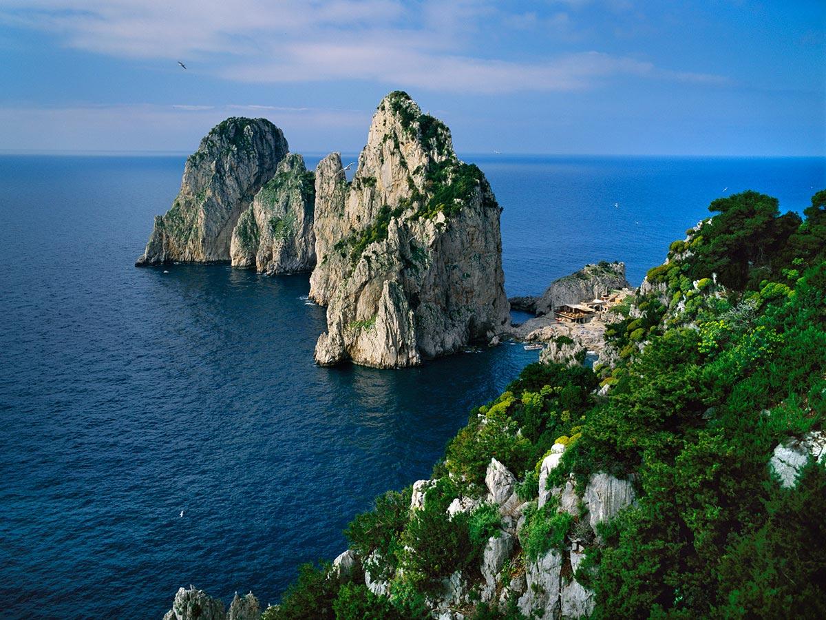 The Fraaglioni Seaguls, Capri