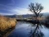 1200_morning-frost-bishop-creek