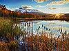 Beaver Pond - Telluride Carmichael Productions, Inc. Landscape